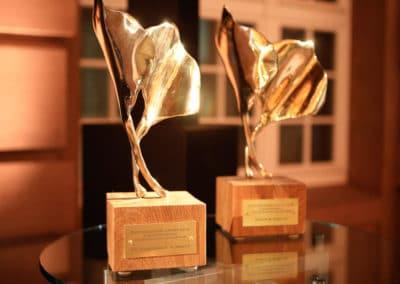 Shepard Stone Award 2019